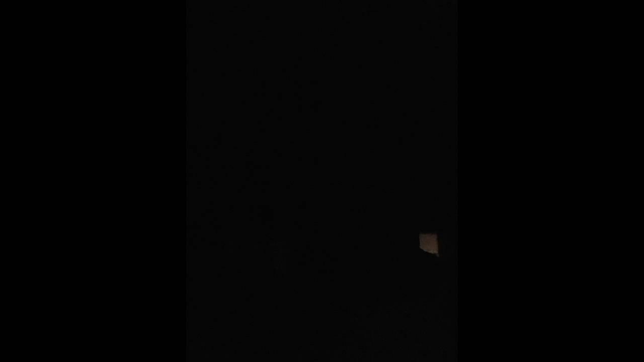 bobcat scarey sounds in my backyard youtube