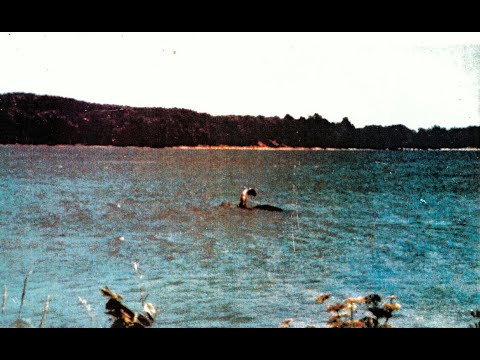 Cryptid Hunt - Lake Monster documentary