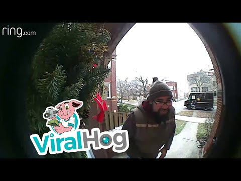 Doc Reno - Squirrel says hi to UPS driver!