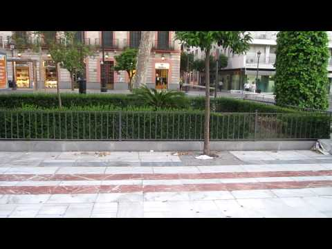 Evening Paseo on the Plaza Nueva, Sevilla