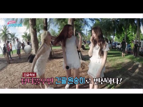 [MOMOLAND in SAIPAN LAND EP.01] Is it a long arm monkey or a MOMOLAND?