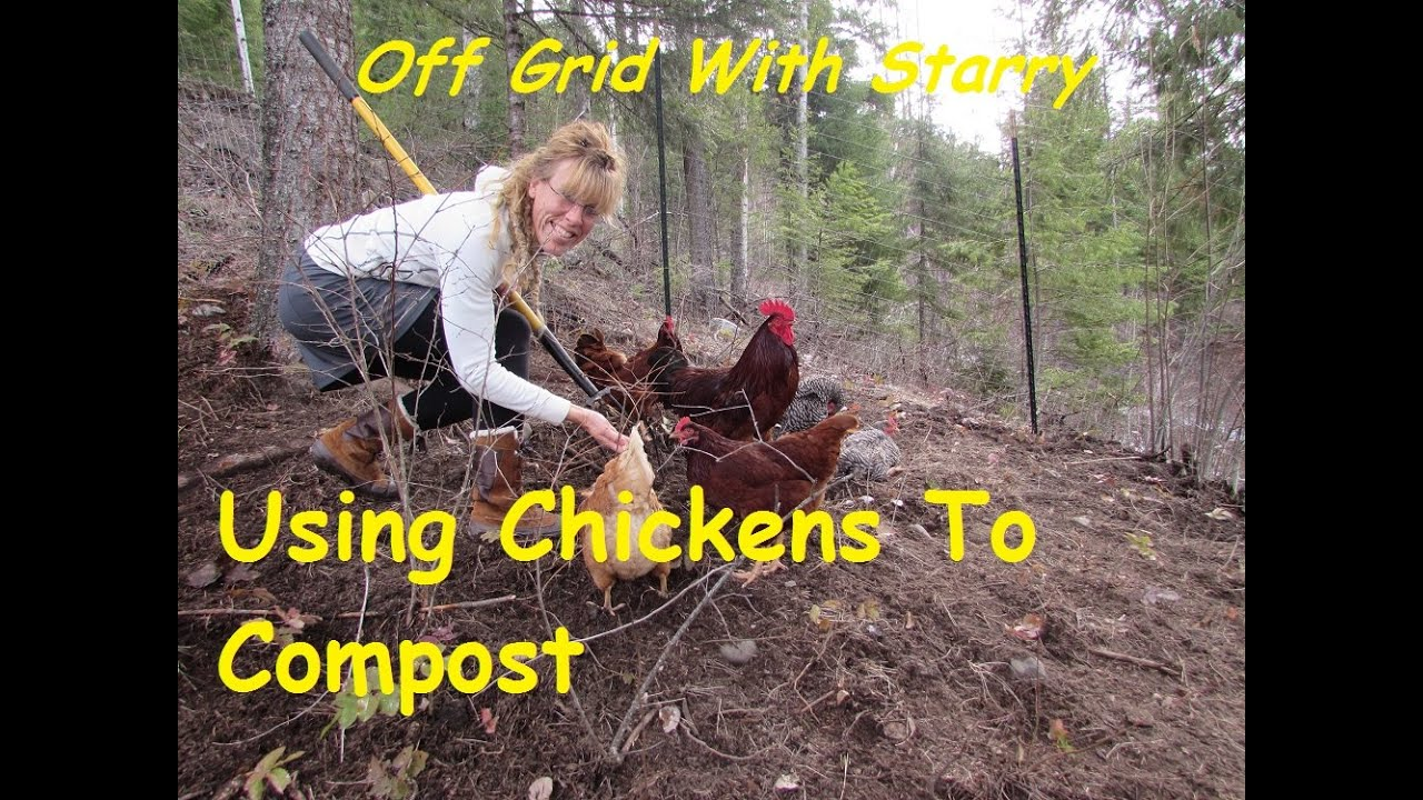 how to make compost with chickens the best compost ever youtube. Black Bedroom Furniture Sets. Home Design Ideas