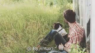 ต้องสู้จึงจะชนะ🌷 เจิน เจิน. บุญสูงเนิน@ By กานดา