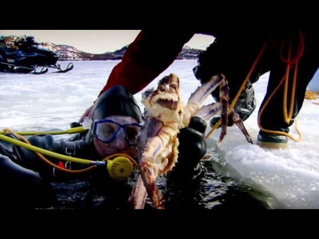 (中文字幕) Gordon Ramsay親自抓帝王蟹並料理 Gordon Ramsay Catching and Cooking King Crab