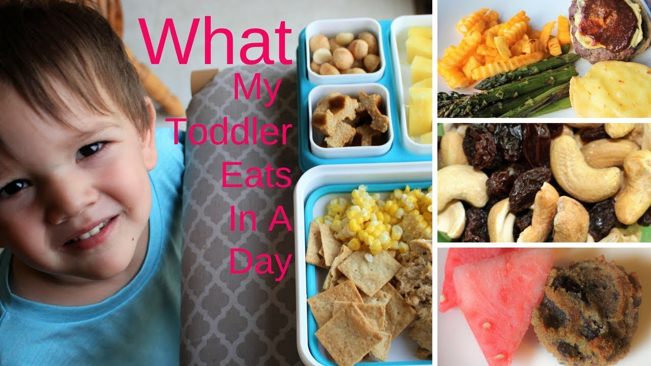 What My Toddler Eats In a Day - YouTube