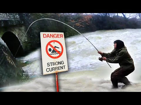 Fishing A FLOODED River For Powerful Fish