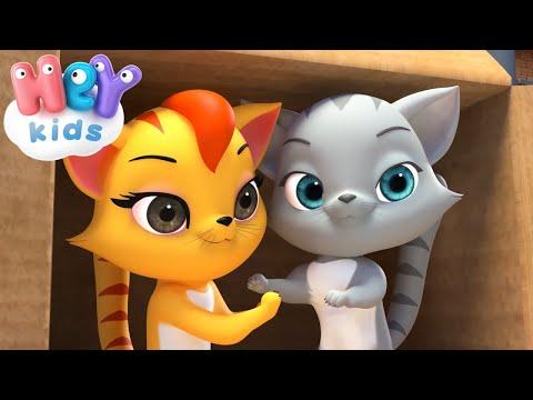 Paola Masciadri – Tomocat e un bel gattone  Canzoni e cartoni animati per bambini – Cantece pentru copii in limba italiana