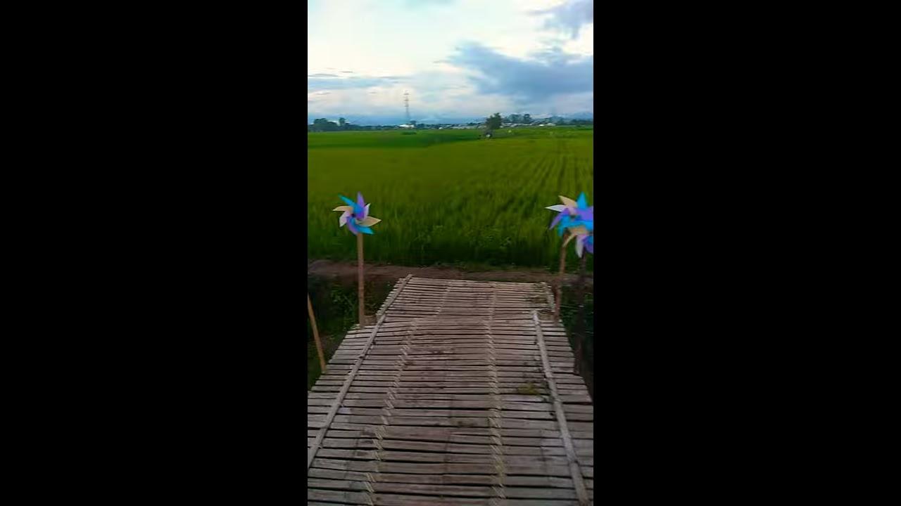 Rainbow Garden Gowa Sulsel - YouTube