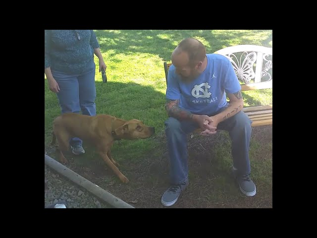 Dog Excited to Be Reunited with Owner