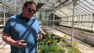 What's Blooming Wednesday: Greenhouse Tour
