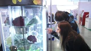 Торговый автомат по продаже цветов ФЛОМАТИК(, 2013-04-08T18:41:10.000Z)