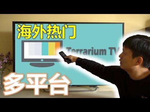 國外熱門看電視app 適合多平臺