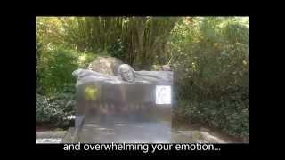 Download lagu Teresa Teng Memorial Park