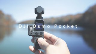 DJI Osmo Pocket Review 6 Months Later!
