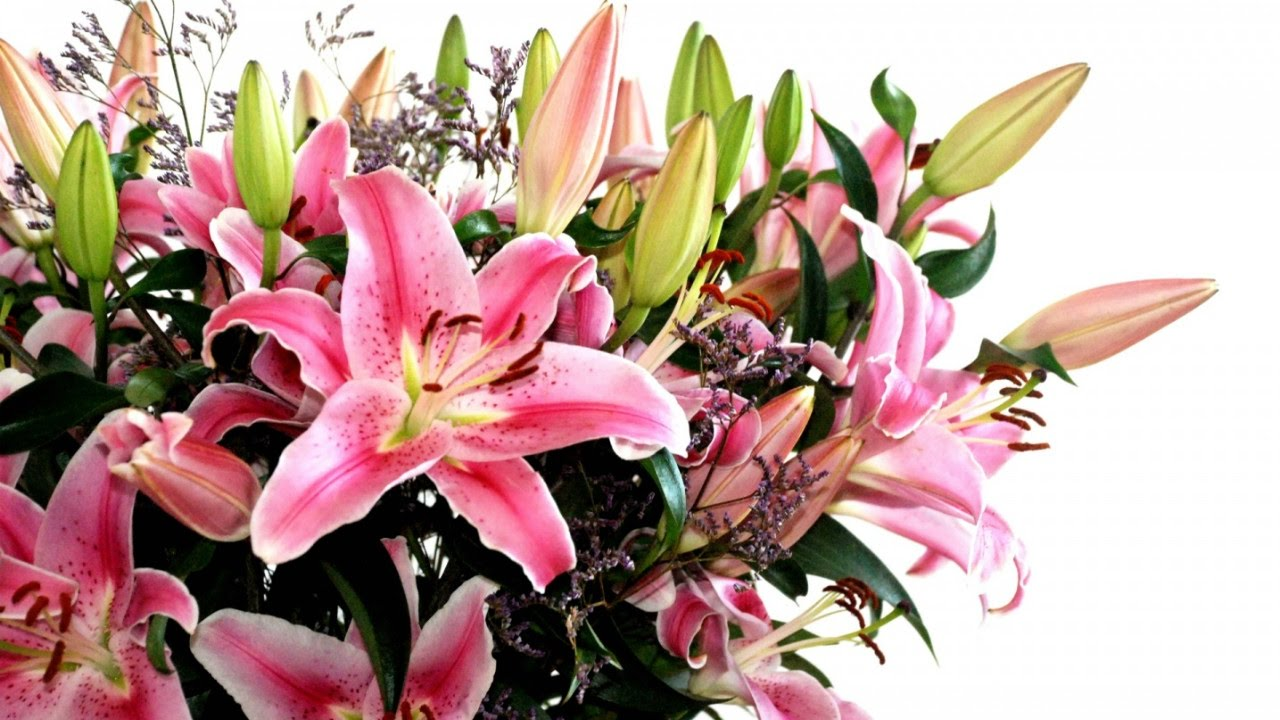 Mixed flowers and lily bunch youtube izmirmasajfo
