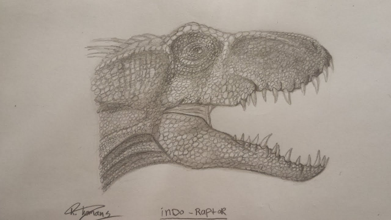 indo raptor speed drawing part 1  youtube