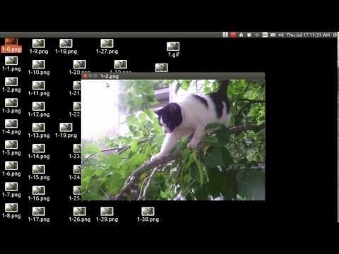 Ubuntu Basics RightClick scripts with Ubuntu Tweak