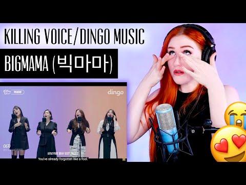 VOICE COACH REACTS  BIGMAMA (빅마마) - Dingo Music / Killing Vo
