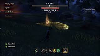 ESO Naked Cat Fights