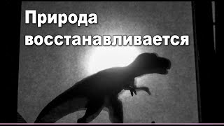 Театр теней с динозаврами Развлечения для детей и взрослых на карантине Jurassic Park shadow play
