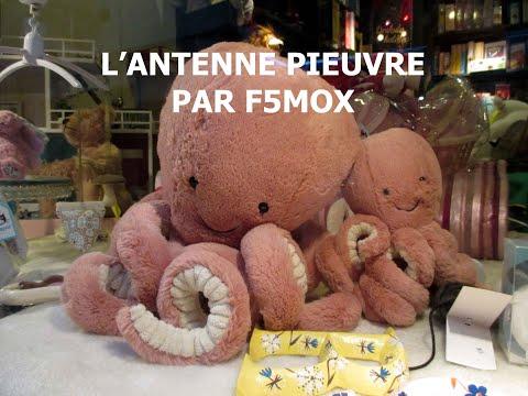 L' ANTENNE PIEUVRE PAR F5MOX GERARD