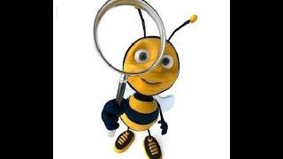 видео интернет магазин пчеловодства