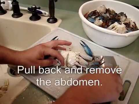 One way to clean a Blue Crab...