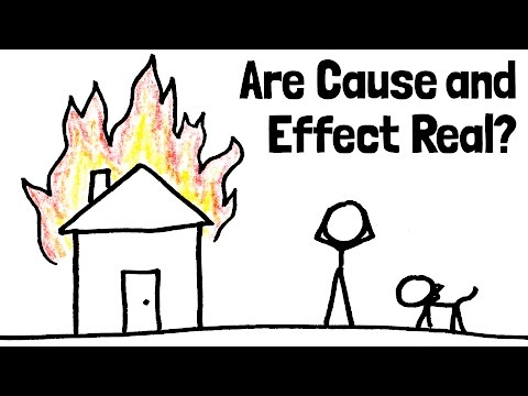Do Cause and Effect Really Exist? (Big Picture Ep. 2/5)