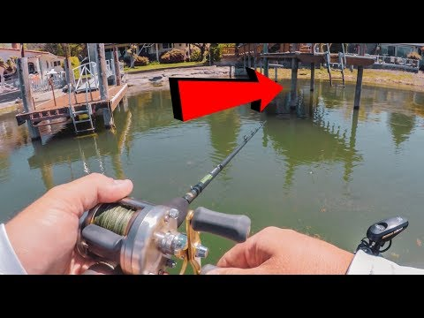 Dock Fishing Made Easy - How To Catch EVERY Bass!