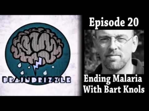 Braindrizzle Ep20 - Ending Malaria With Bart Knols
