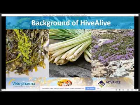 Webinar on seaweeds and honeybee health