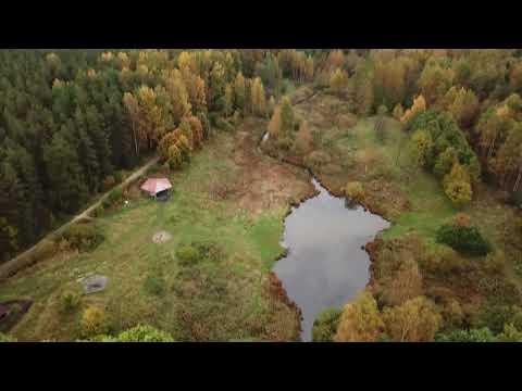 Ржевский лесопарк и река Лапка в Красногвардейском районе Санкт-Петербурга