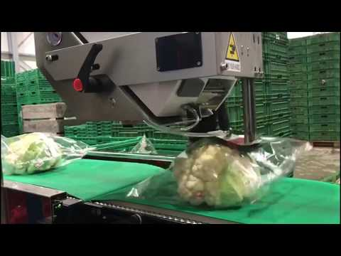 weigh-price-labeler-for-cabbage