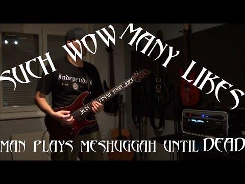 Catch Thirtythree - Meshuggah cover