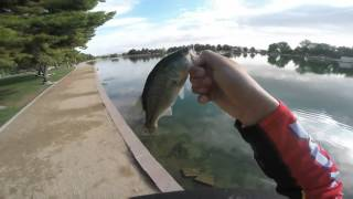 Sunset Park Spring Fishing (BASS)