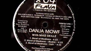 Watch Danja Mowf Mowf Of Madness video