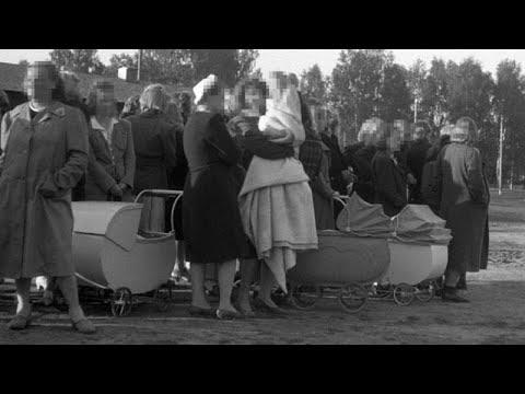 أوسلو تعتذر لنرويجيات ارتبطن طوعيا -بالمحتل النازي- إبان الحرب…  - نشر قبل 3 ساعة
