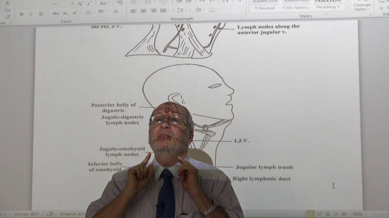 Anatomy - Lymphatic drainage of Head & Neck - part 2 - YouTube