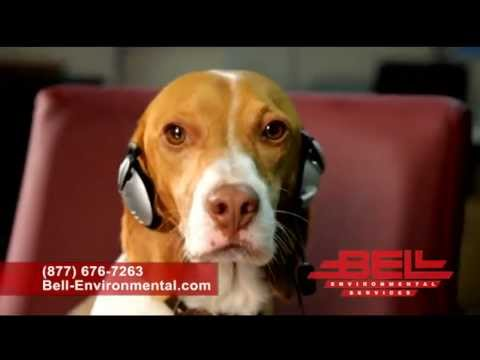 Roscoe Bed Bug Commercial