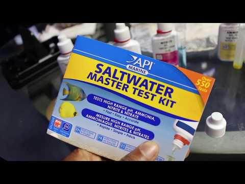 How To Test Your Saltwater Aquarium With API Saltwater Master Test Kit