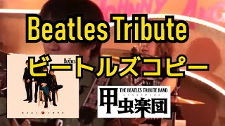 Real Love (The Beatles Cover)