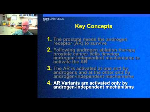 Donald Tindall - The Molecular Mechanisms of Castration Resistant Prostate Cancer