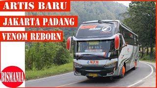 Gambar Ini Dia Bus Yang Sering Di Cari Untuk Padang Jakarta