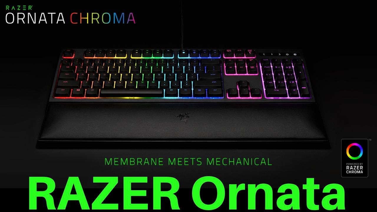 razer ornata chroma how to change color