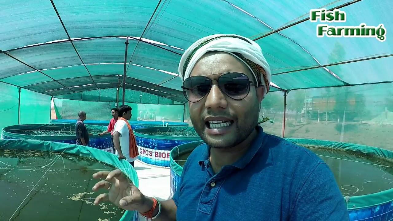 biofloc fish farming in india,biofloc tank system,biofloc