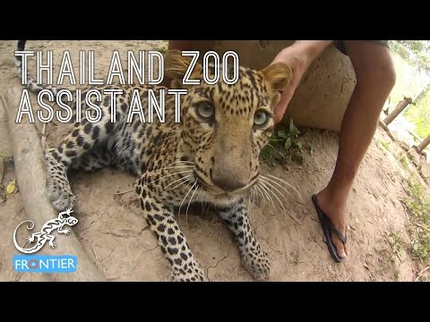 Thailand Zoo Assisstant