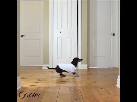 Crusoe Reenacts Tom Cruise in