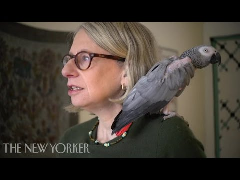 At Home With Roz Chast - The New Yorker