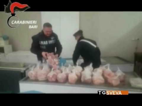 Casamassima | Carne e pesce avariati: maxi sequestro dei Carabinieri in un negozio cinese from YouTube · Duration:  1 minutes 6 seconds