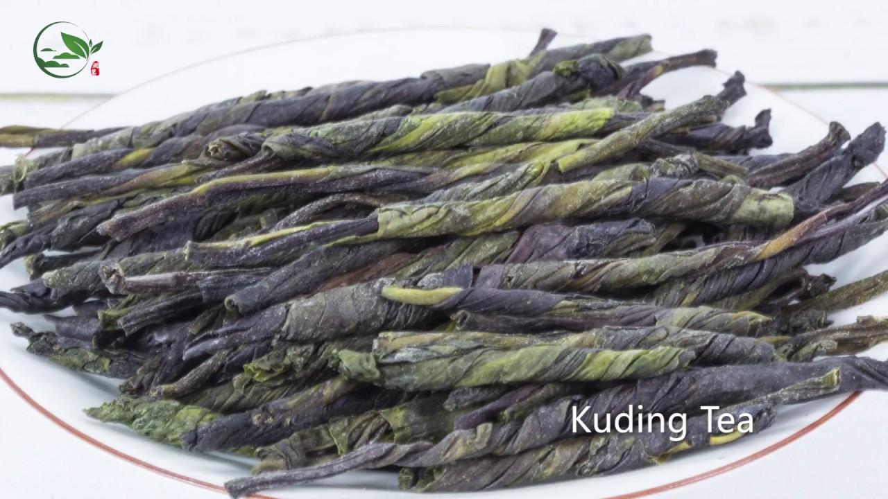 Kuding Tea Benefits Kuding Tea Diabetes Youtube